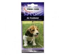 Illatosító Motip0018A Fresh Cars /kutya